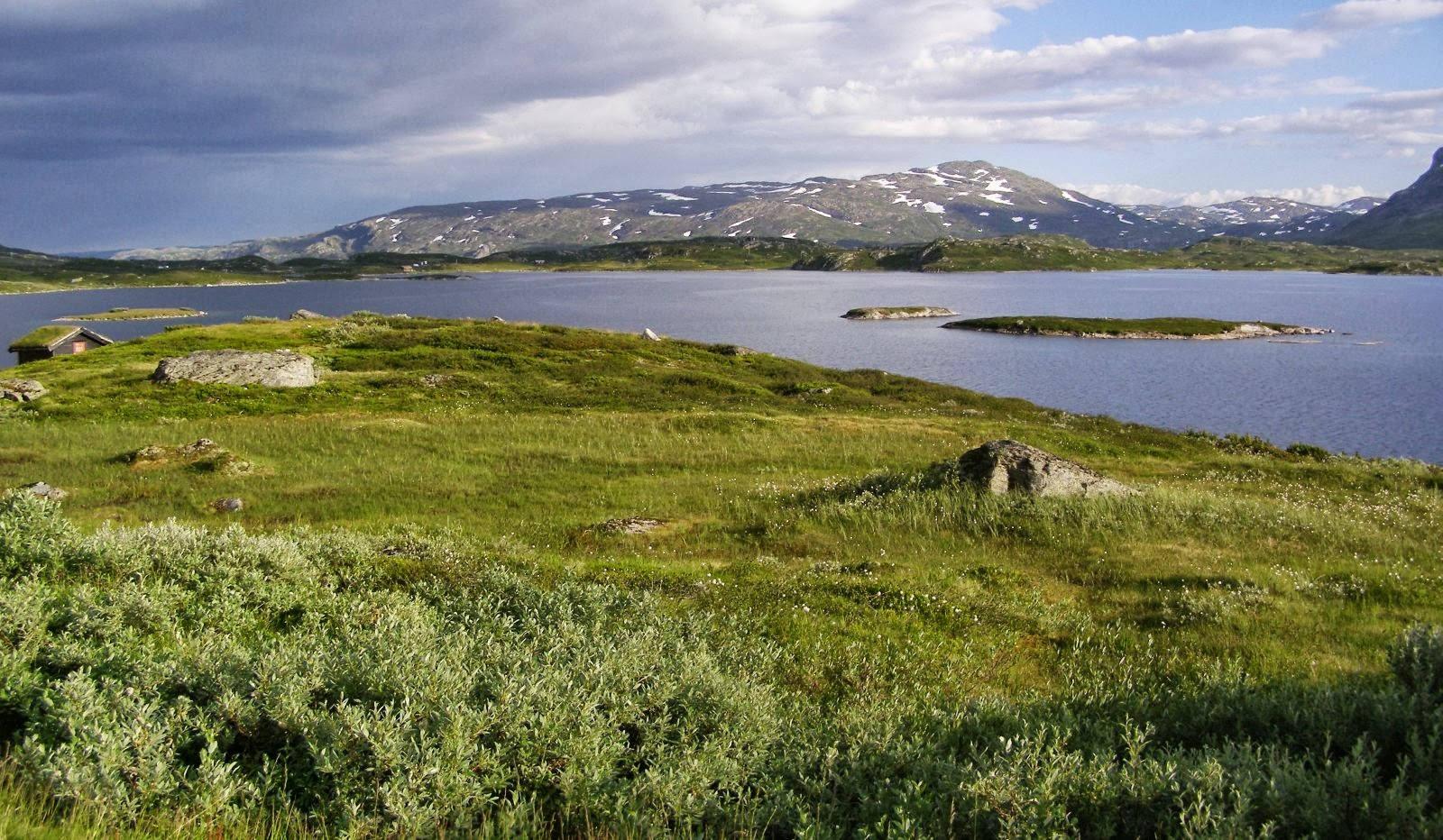 Norwegia – okręg Telemark ipłaskowyż Hardangervidda