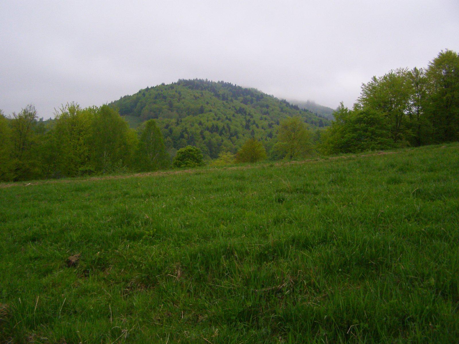 ce3068 - Góry Czerchowskie i majówkowa wyrypa - Cergov