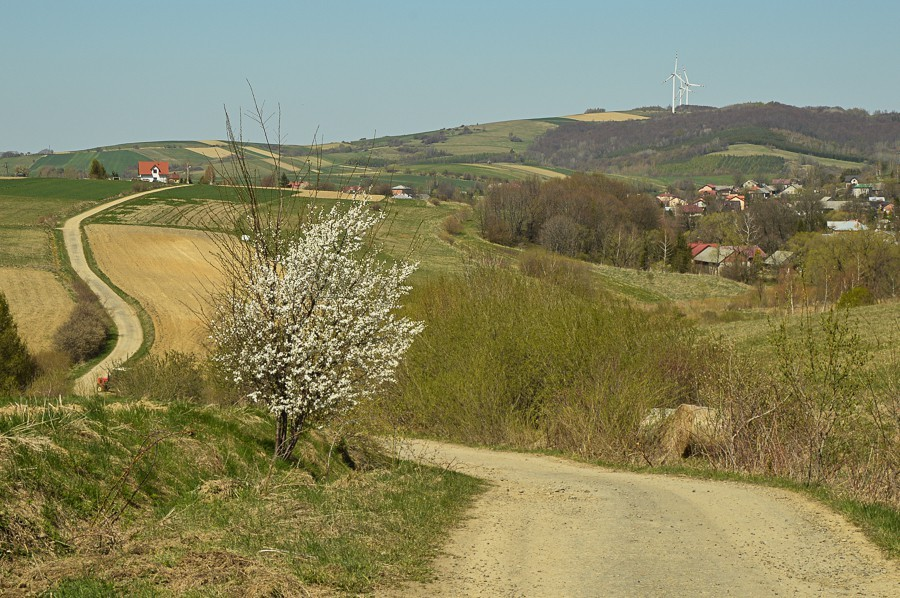 Kamienne – wysiedlona wieś Pogórza Bukowskiego