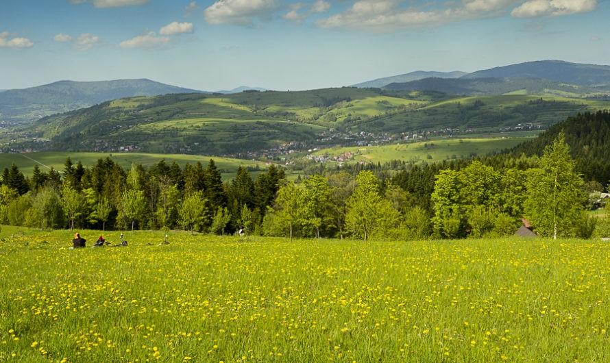 Góra Chabówka. Widokowe szlaki wokolicach Rabki