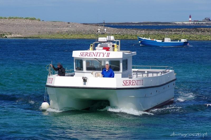 Wyspy Farne