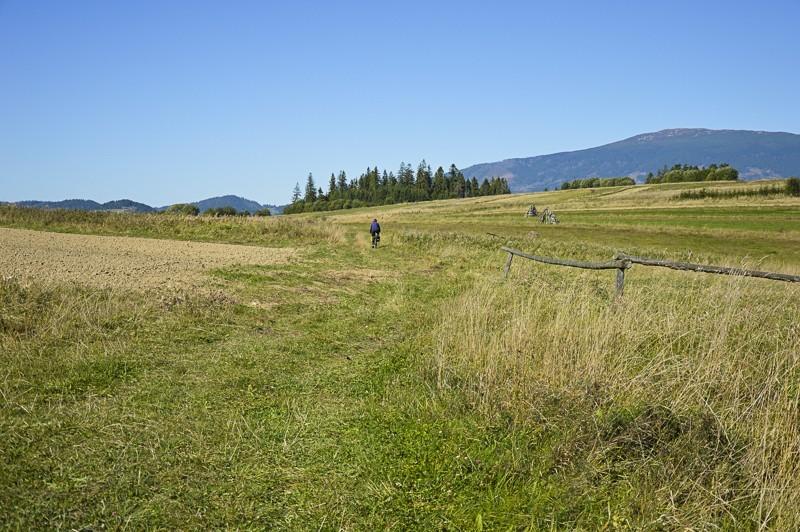 14 - Zielony szlak zJabłonki podBabią. Wcieniu wielkiej góry