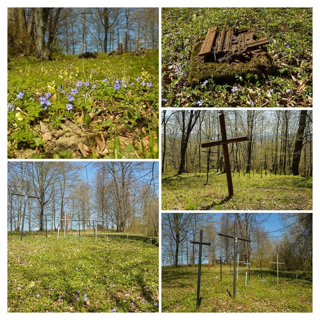 12 - Kamienne - wysiedlona wieś Pogórza Bukowskiego