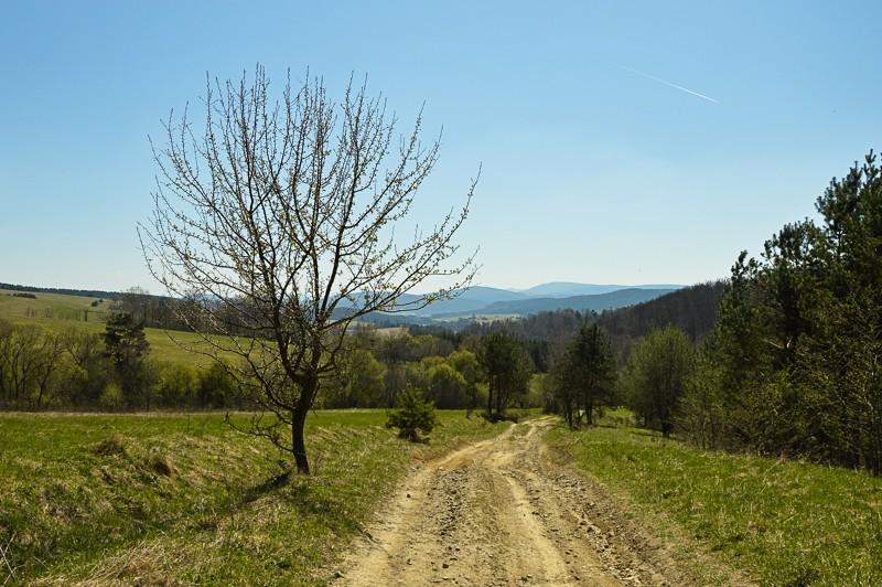19 - Kamienne - wysiedlona wieś Pogórza Bukowskiego