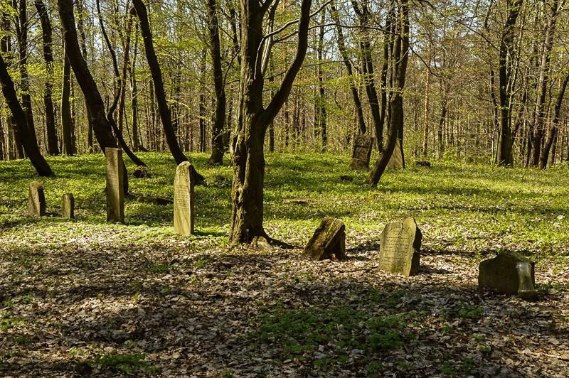24 - Kamienne - wysiedlona wieś Pogórza Bukowskiego