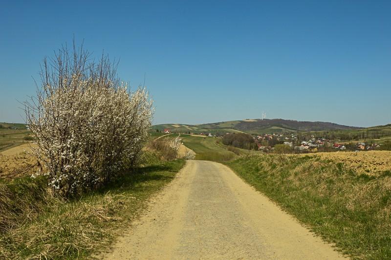 32 - Kamienne - wysiedlona wieś Pogórza Bukowskiego