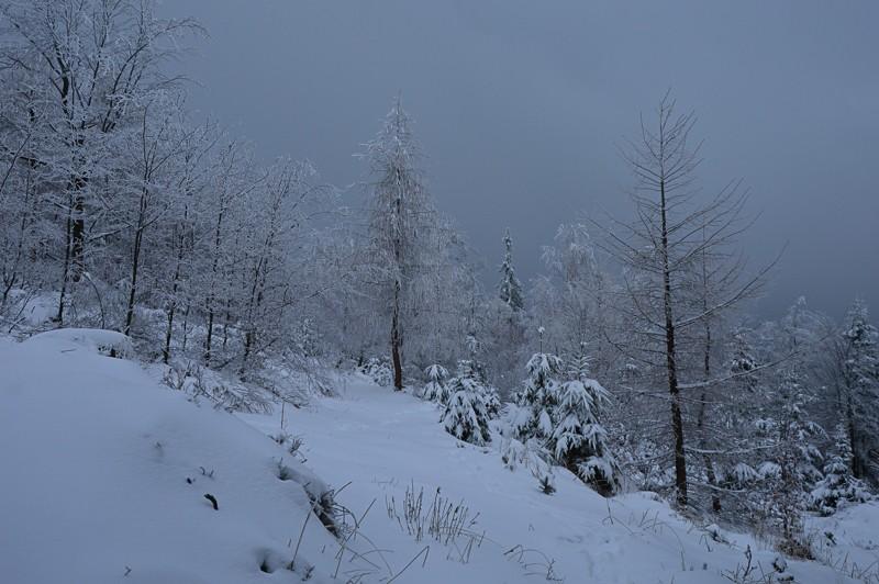 02 - Klimczok zBystrej. Piękna szara zima