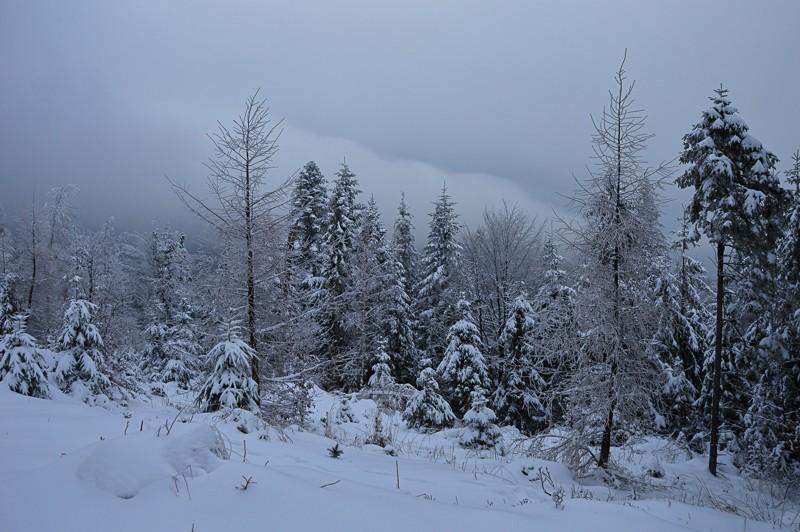 04 - Klimczok zBystrej. Piękna szara zima