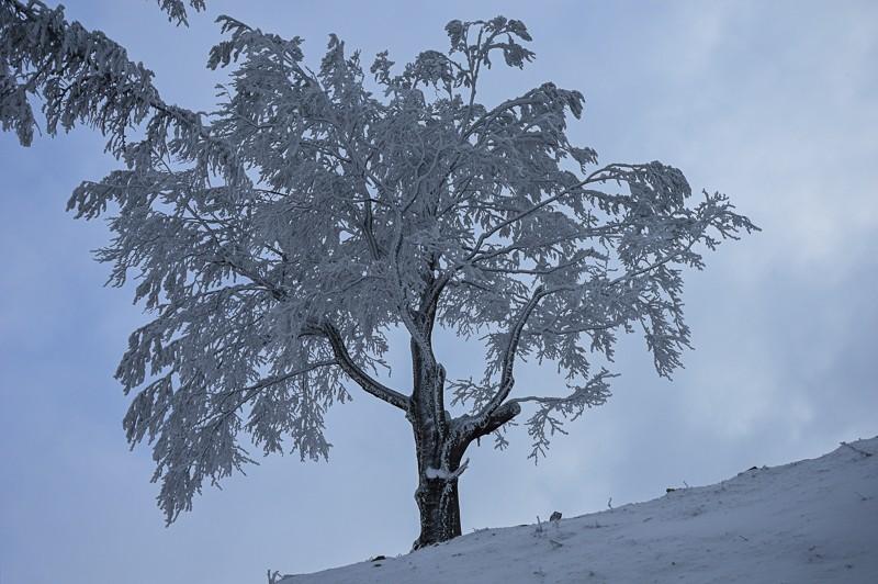 05 - Klimczok zBystrej. Piękna szara zima