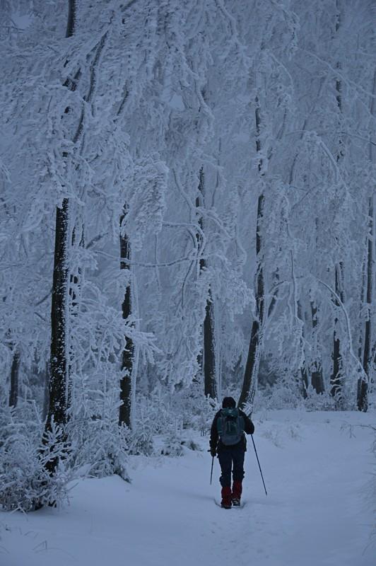 07 - Klimczok zBystrej. Piękna szara zima