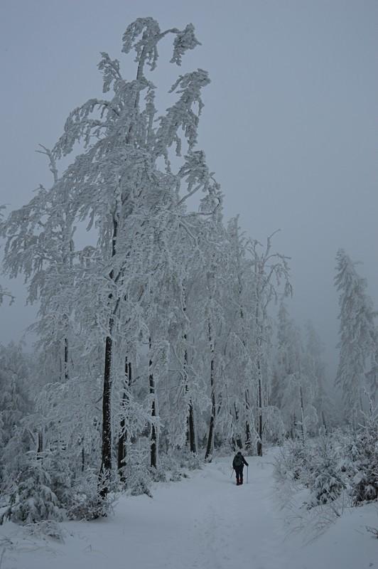 08 - Klimczok zBystrej. Piękna szara zima