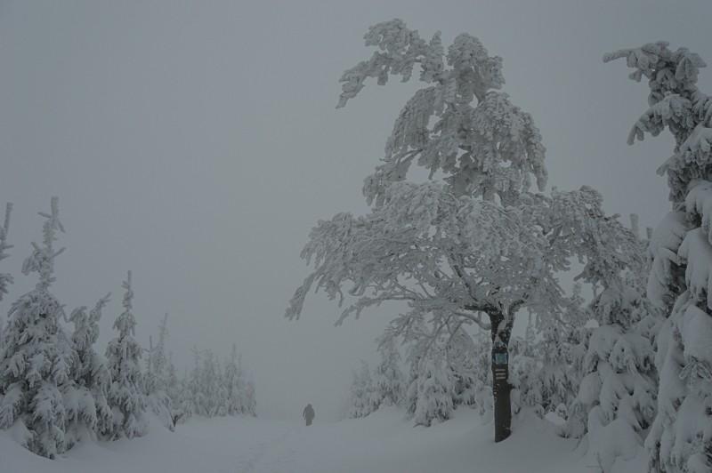 10 - Klimczok zBystrej. Piękna szara zima