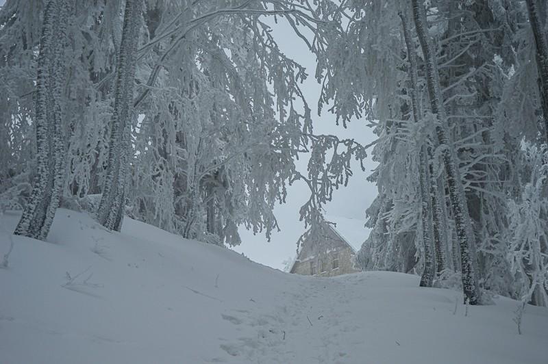 16 - Klimczok zBystrej. Piękna szara zima