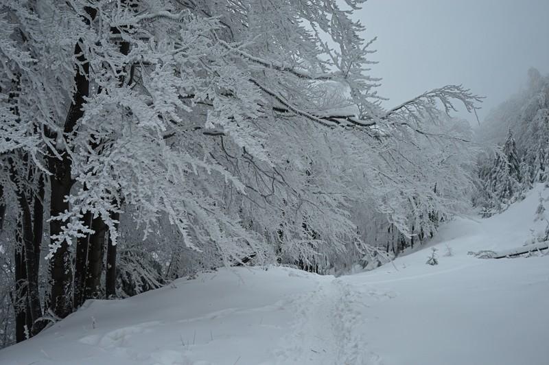 17 - Klimczok zBystrej. Piękna szara zima