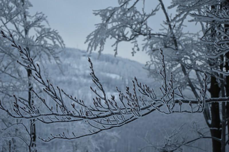 21 - Klimczok zBystrej. Piękna szara zima