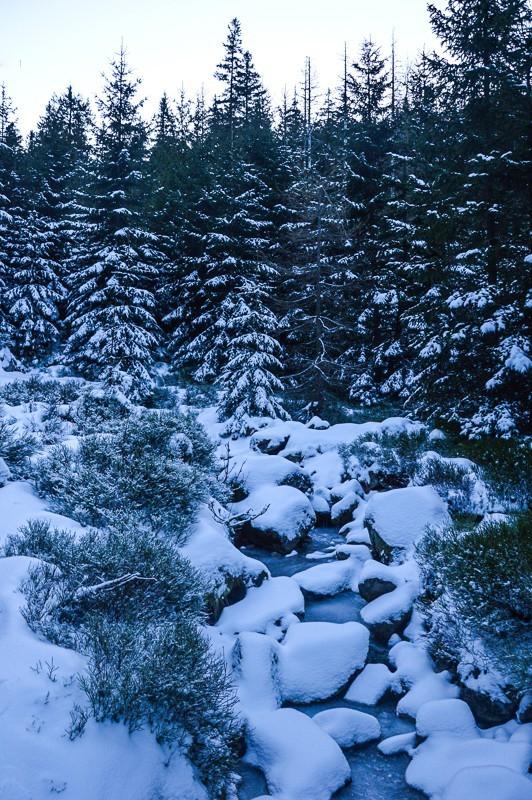 77 - Śnieżne Kotły zJagniątkowa. Polodowcowo izmgłami