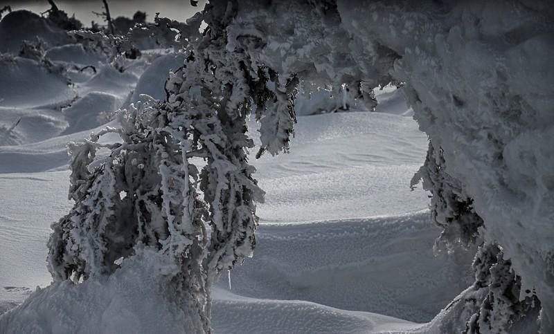 05 - Królewna Śnieżka itysiąc krasnoludków