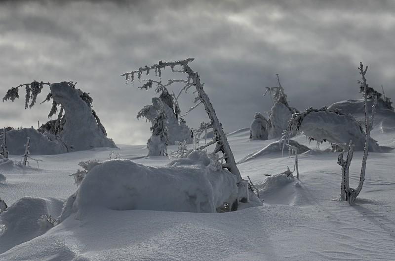 06 - Królewna Śnieżka itysiąc krasnoludków