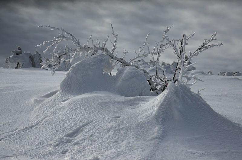 09 - Królewna Śnieżka itysiąc krasnoludków