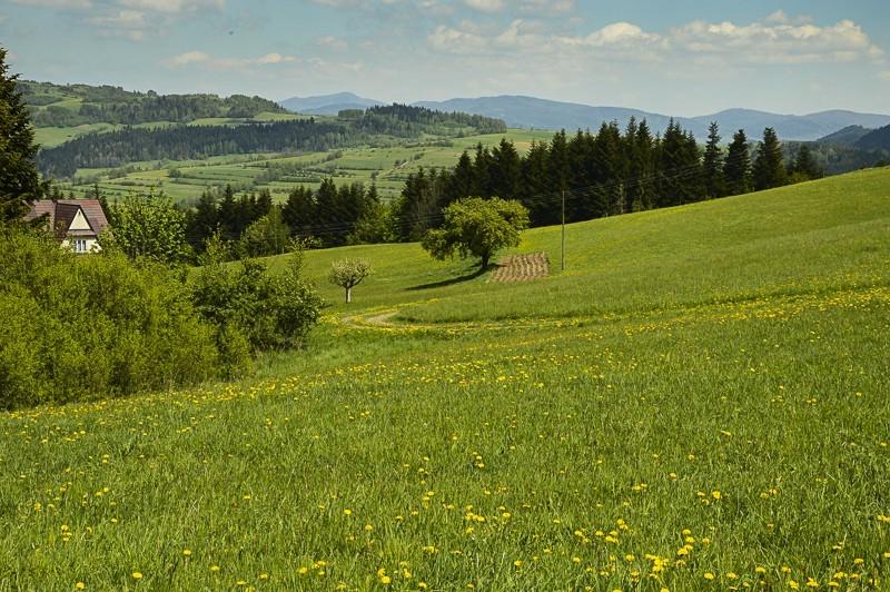 04 - Góra Chabówka. Widokowe szlaki wokolicach Rabki