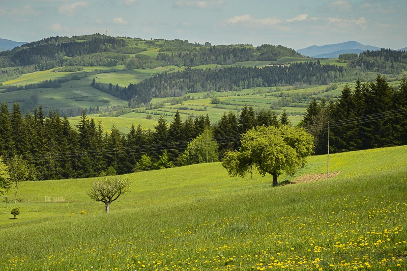 06 - Góra Chabówka. Widokowe szlaki wokolicach Rabki