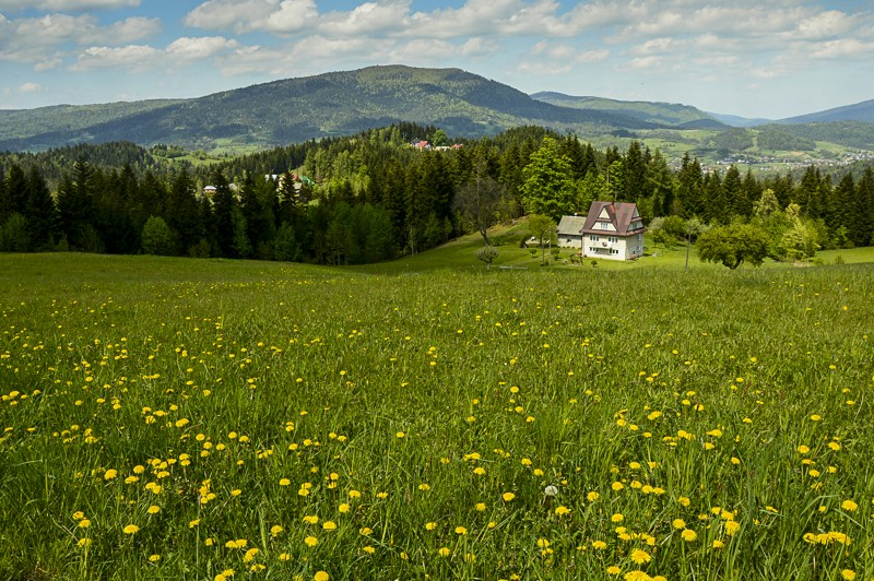 07 - Góra Chabówka. Widokowe szlaki wokolicach Rabki