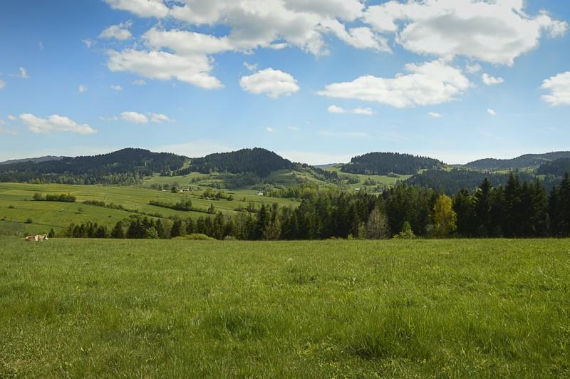 13 - Góra Chabówka. Widokowe szlaki wokolicach Rabki