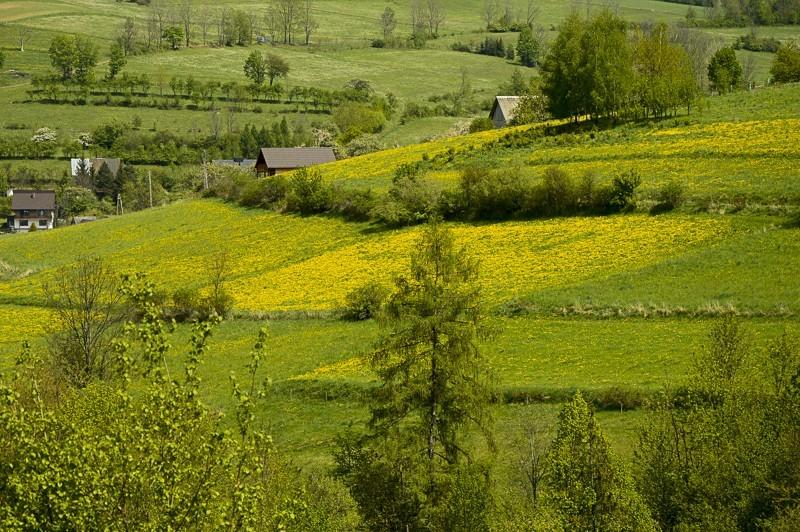 21 - Góra Chabówka. Widokowe szlaki wokolicach Rabki