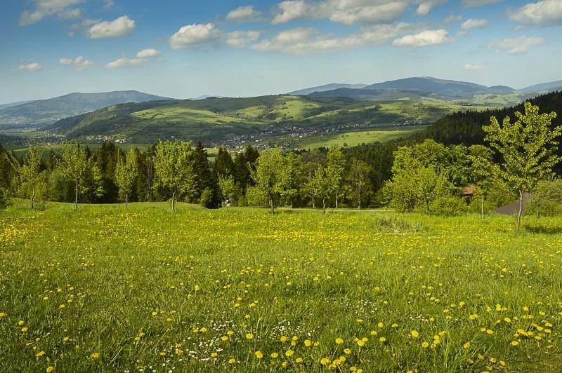 36 - Góra Chabówka. Widokowe szlaki wokolicach Rabki