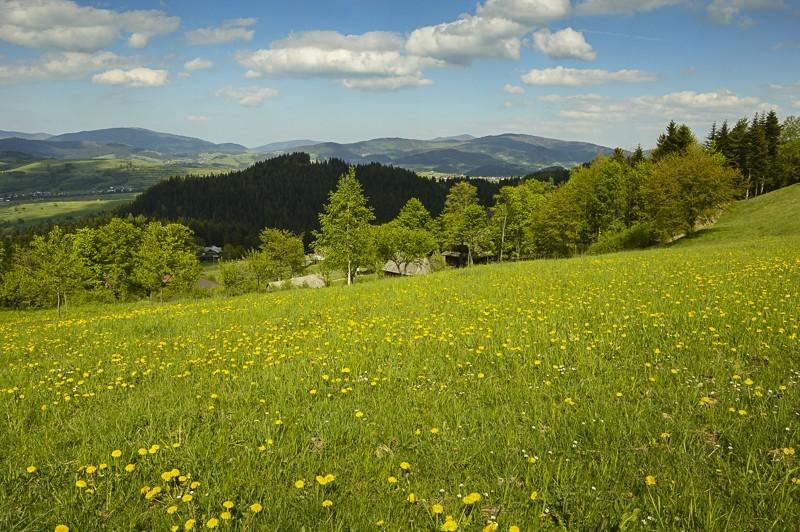 38 - Góra Chabówka. Widokowe szlaki wokolicach Rabki