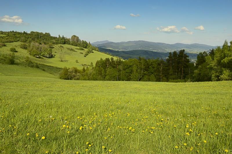 57 - Góra Chabówka. Widokowe szlaki wokolicach Rabki