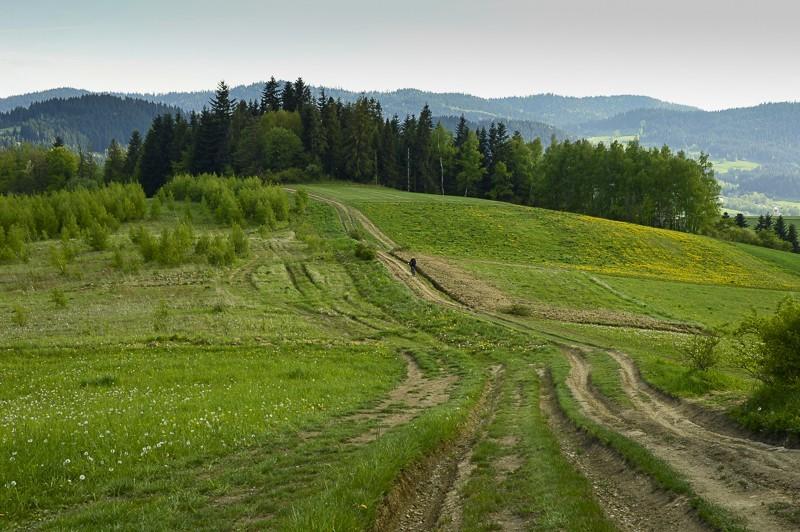 62 - Góra Chabówka. Widokowe szlaki wokolicach Rabki