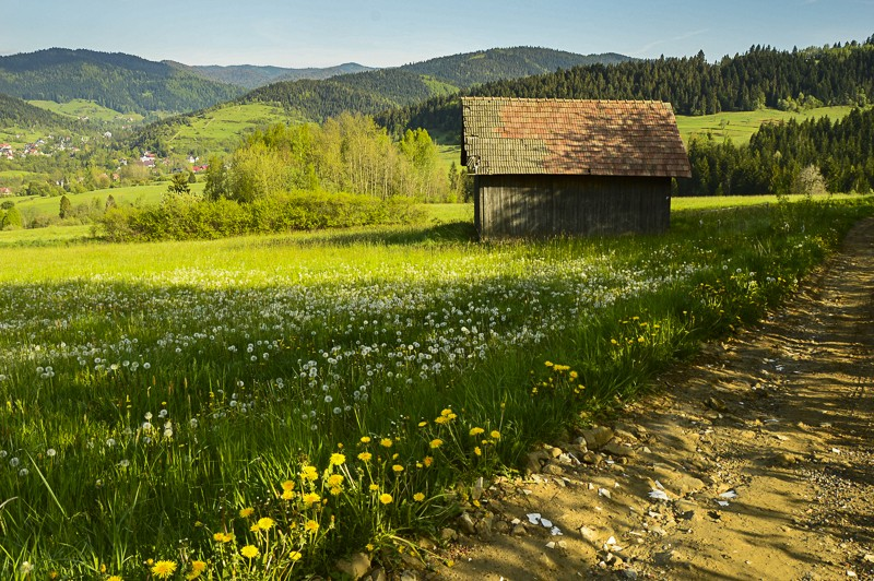 75 - Góra Chabówka. Widokowe szlaki wokolicach Rabki