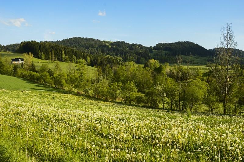 78 - Góra Chabówka. Widokowe szlaki wokolicach Rabki