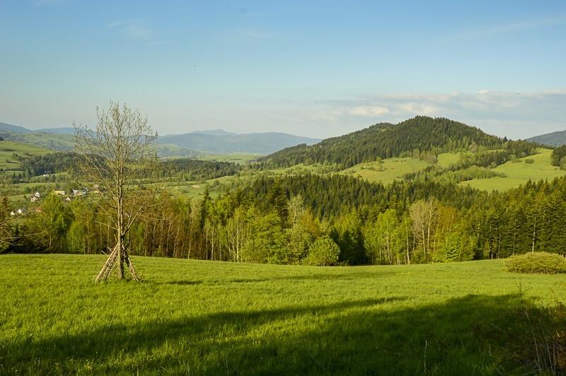 79 - Góra Chabówka. Widokowe szlaki wokolicach Rabki