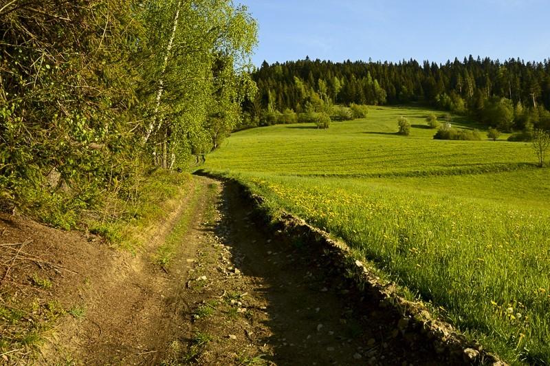 83 - Góra Chabówka. Widokowe szlaki wokolicach Rabki