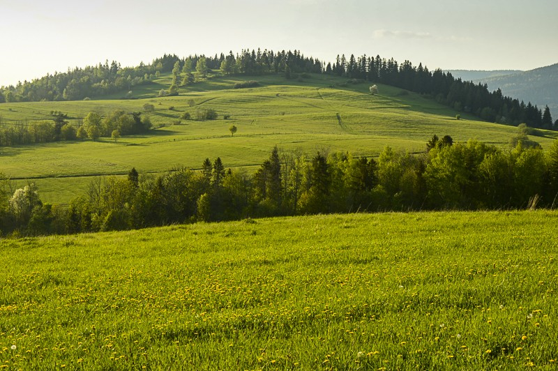 90 - Góra Chabówka. Widokowe szlaki wokolicach Rabki
