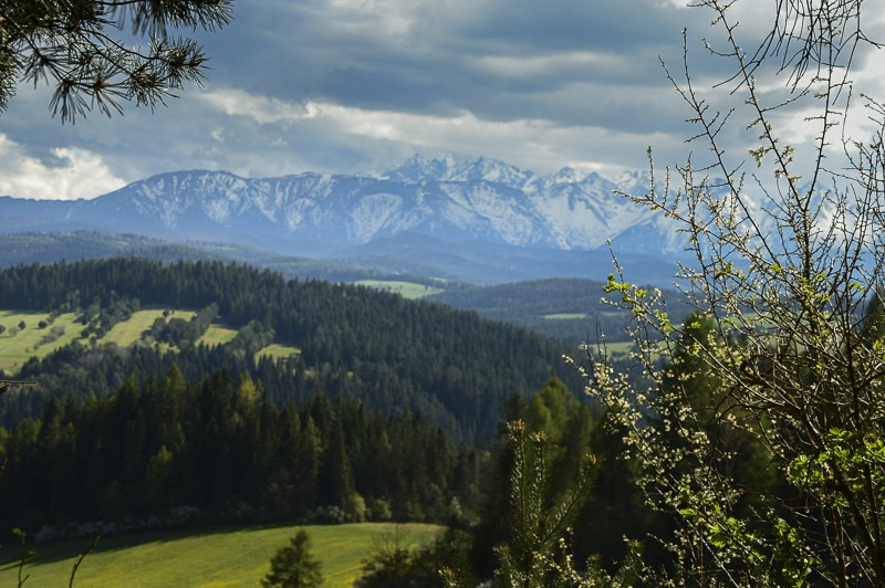 35 - Między zamkami. Velo Czorsztyn przezPrzełęcz Osice