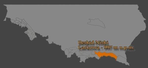 Blechnarka